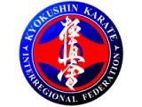 Логотип Всеукраинская Федерация Киокушин Каратэ
