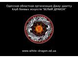 Логотип Одесская областная организация Джиу-джитсу