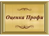 Логотип Оценка Профи