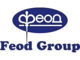 Логотип Феод Груп