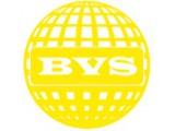 Логотип BVS